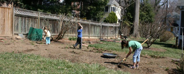 Spring Cleaning: Yard Maintenance